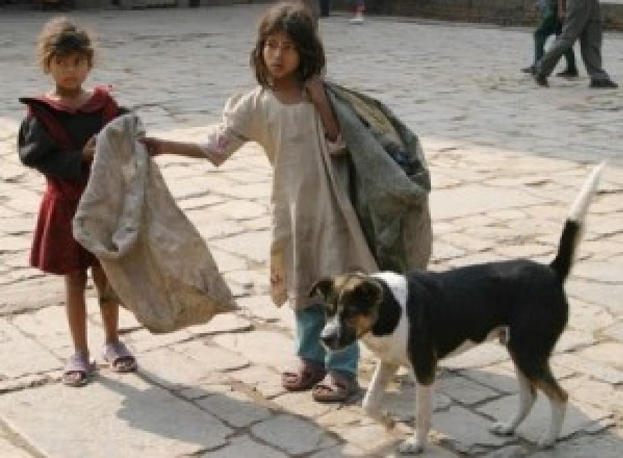 03 - CRIANÇAS de RUA e cachorro