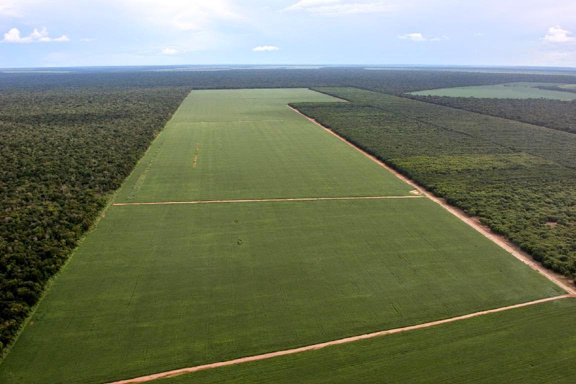 latifúndio na amazônia